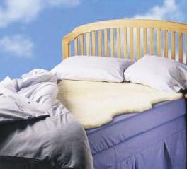 zalea cama