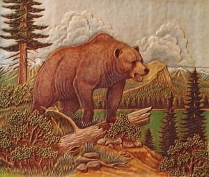 oso cuero stolhman